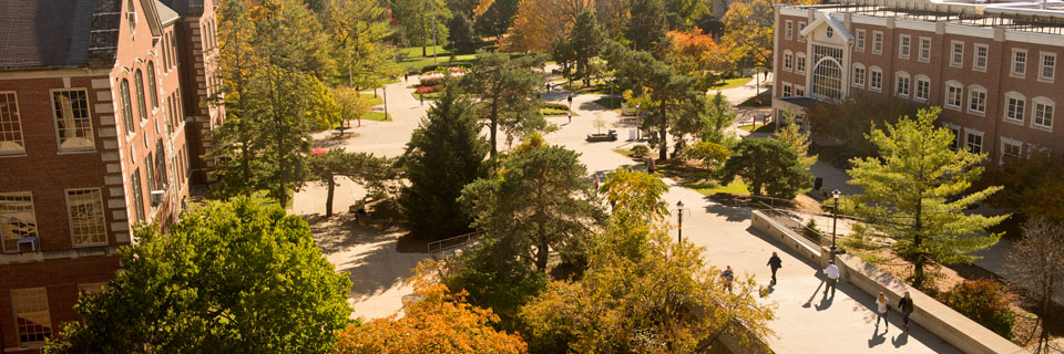 Overview of Illinois State's quad.